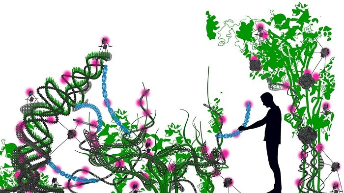 Florarobotica Robotic Plants - May Influence the World of the Urban Farming Future