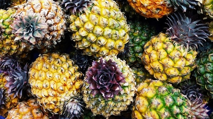 Pineapple waste-to-energy plant in the city of Cagayan de oro provides renewable electricity