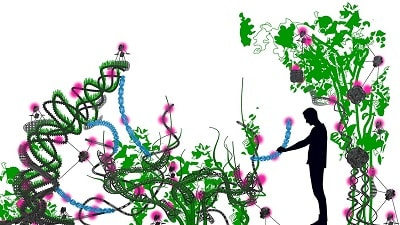 Florarobotica Robotic Plants – May Influence the World of the Urban Farming Future?